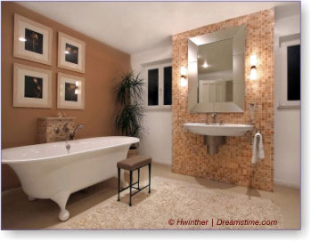 Vintage Bathroom Architectural Design