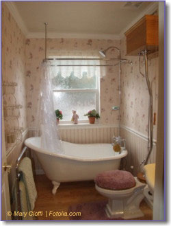 slipper bath and antique toilet